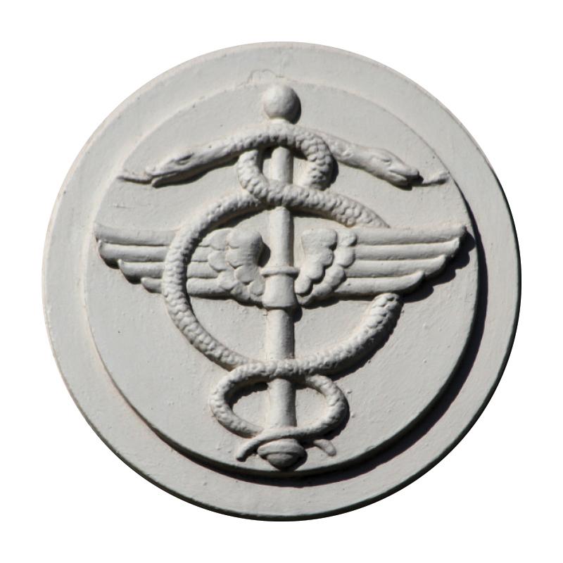 Info2-MedicalSnake